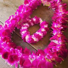 生花でつくる~ハワイの首飾り(レイ・メイキング)