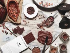 カカオから知り、考え、チョコレートをつくる Bean to barというチャレンジを知ろう